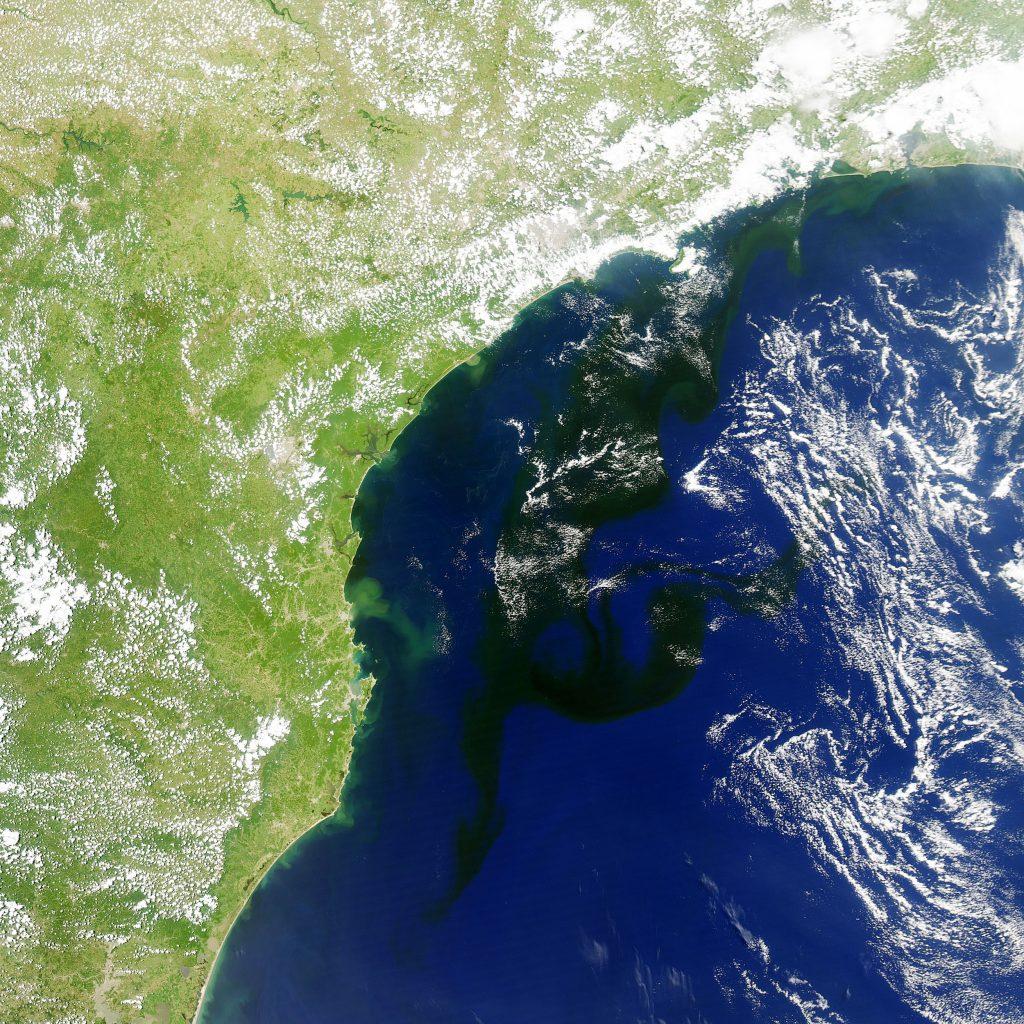 autotroph bloom modis brazil nasa 1024x1024 - Megalodon Dev Köpekbalığı Canlanıyor mu? (Teoriler ve Belgeler)