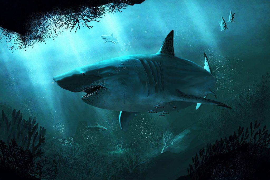 megalodon by highdarktemplar d6jgjzn 1024x683 - Megalodon Dev Köpekbalığı Canlanıyor mu? (Teoriler ve Belgeler)