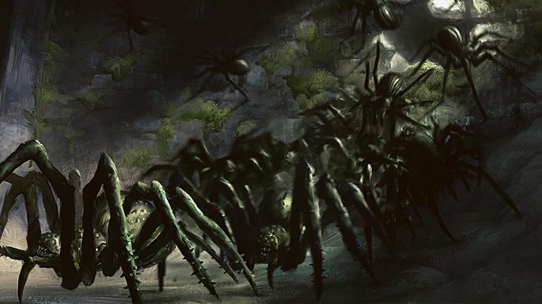 PL20160308 icon - Kongo'nun 1,5 Metrelik Dev Örümcekleri