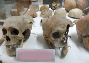 1427 300x213 - Mimar Sinan'ın Kayıp Kafatası Nerede. Kayıp mı, Yoksa Bir Tarikatın Elinde Mi ?
