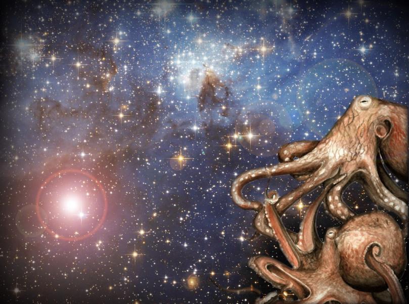 the brightest of stars copy - Bilim Adamlarının İddiaları Ahtapotlar Dondurulmuş Yumurta Olarak Uzaydan Yeryüzüne Geldi