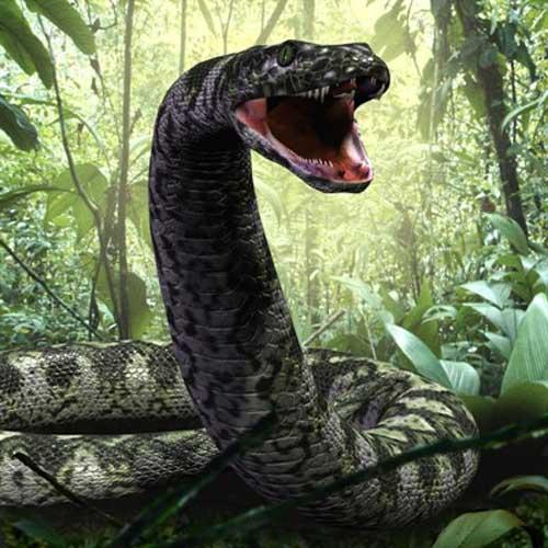 titanoboa worlds largest snake 2 - Dev Yılanların Saldırısına Uğrayan Kabile Agta