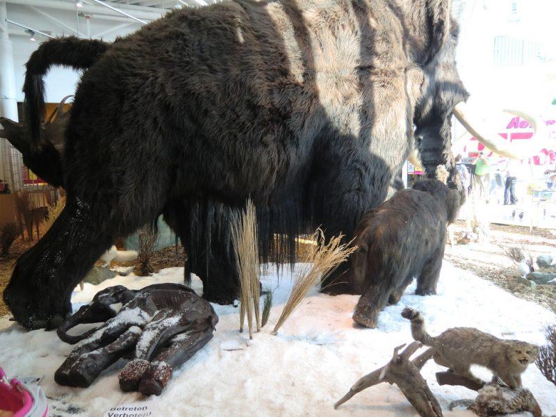 mammut e1537538368210 - Dinozorlar Yaşıyor: Ruslar'ın Gizli Jurassic Parkı